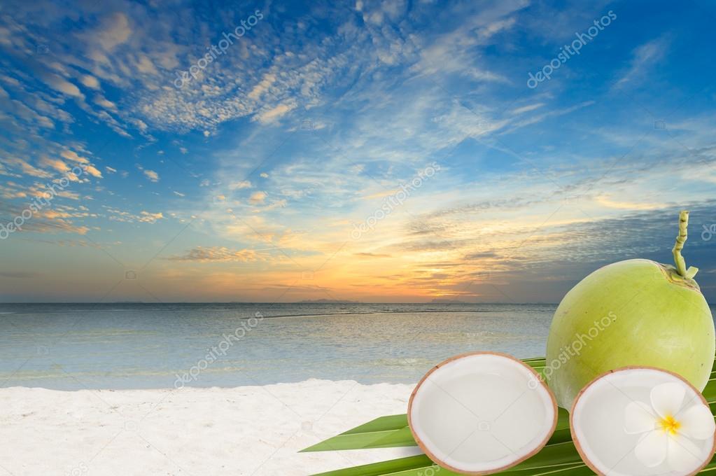 Cocco verde e spiaggia di sabbia foto stock jcsmilly - Immagini di spongebob e sabbia ...