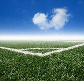 Fotografie fotbalové travnaté hřiště