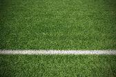 Fényképek Futball labda zöld fű mező