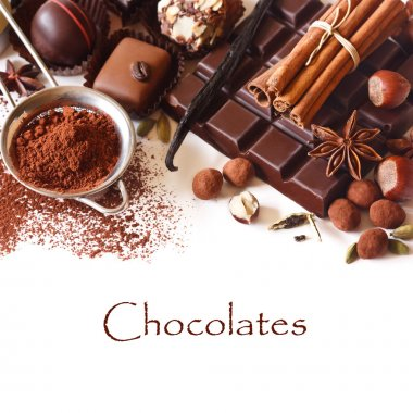 Delicious chocolates and spices on a white background. stock vector