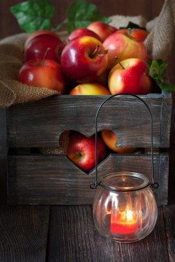 Fresh harvest of apples.
