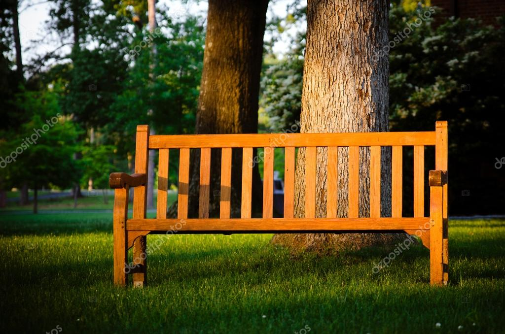 Фотообои Park bench highlighted by late afternoon sun in tranquil setting