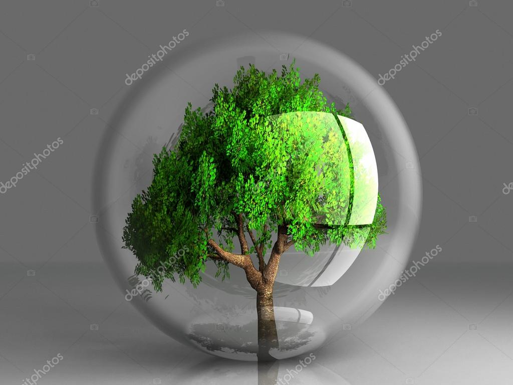 A green tree in a transparent bubble