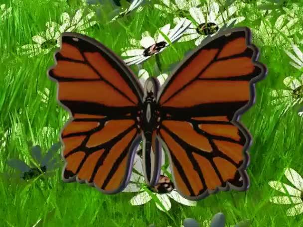 krásný motýl s křídly