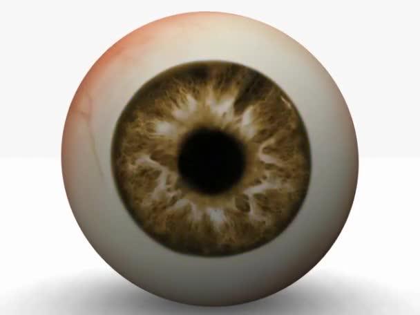 barevné oko
