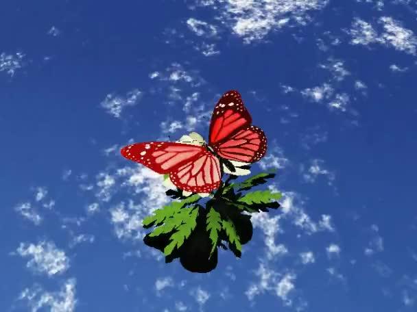 a gyönyörű pillangó szárnyakkal