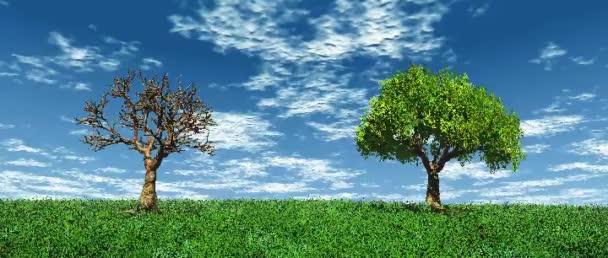Élő és halott fa a fűben