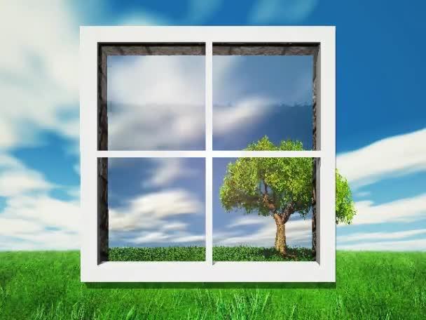 stromy a příroda oknem