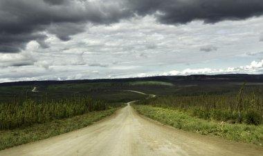 Alaska,curvy road from Fairbanks to Arctic Circle