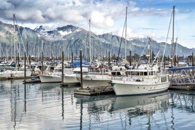 Seward ,Alaska