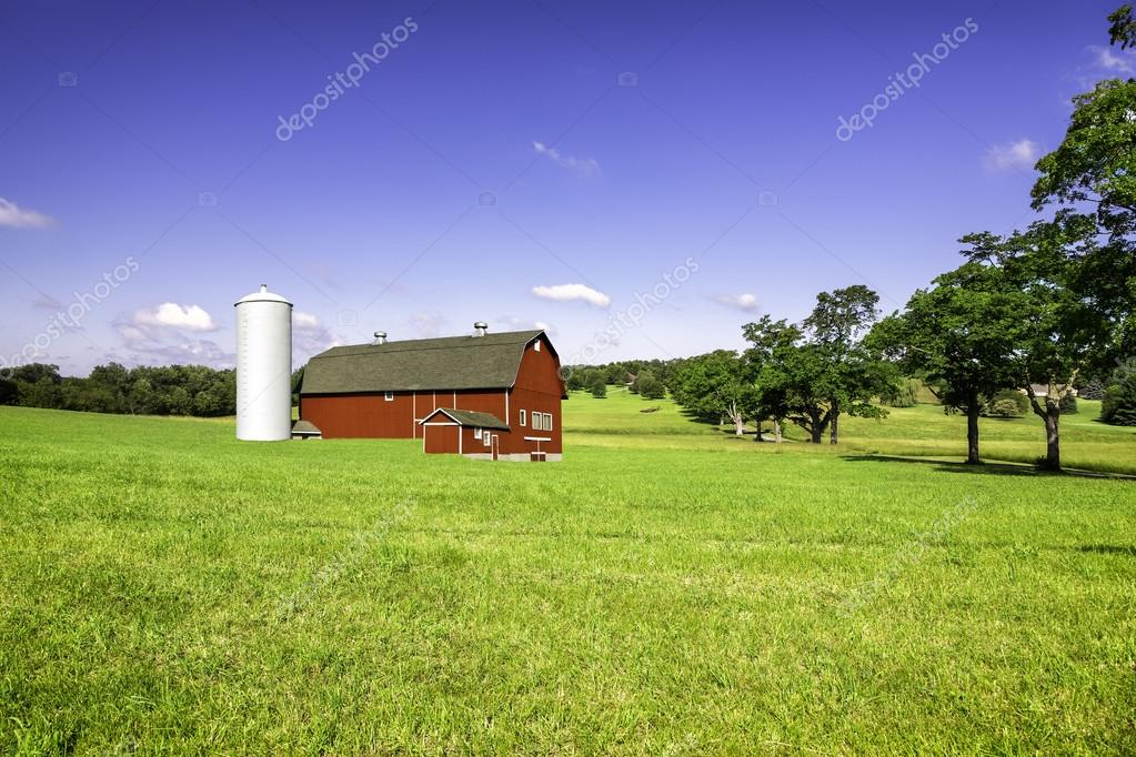 Organic farm on the hill
