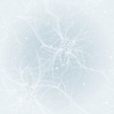 Frost on the window like Christmas flower Poinsettia
