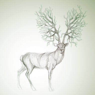 Deer with antlers like Christmas tree
