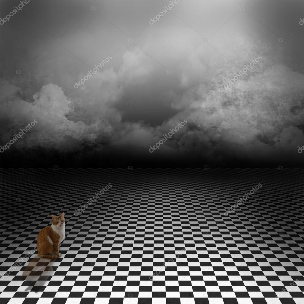 gingembre chat assis dans une prairie effrayant avec sol en noir et blanc correcteur sur le. Black Bedroom Furniture Sets. Home Design Ideas