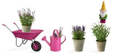 Pink gardening equipment