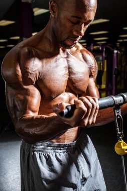 Weight Resistance Training Workout