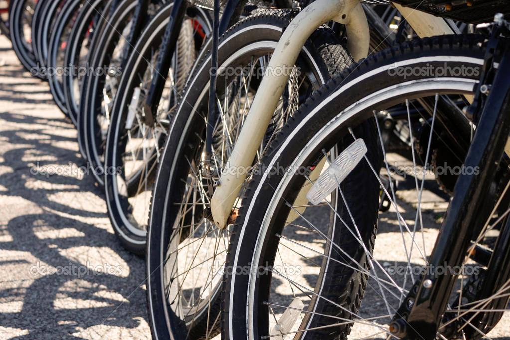 Row of Bicycle Tires
