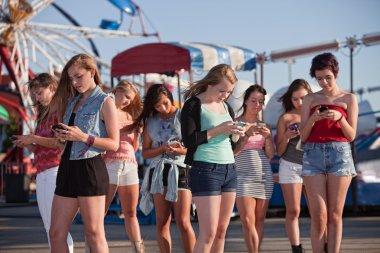 Group of 8 teenage girls text messaging at an amusement park stock vector