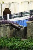Fotografie Cannon in Granada Nicaragua