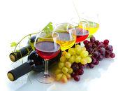 Flaschen und Gläser Wein und reifen Trauben isoliert auf weiss