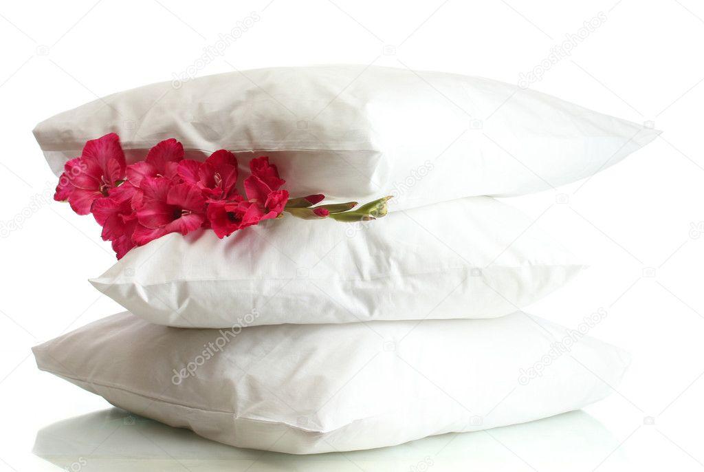 Kussen Wit 13 : Kussens en bloem geïsoleerd op wit u stockfoto belchonock
