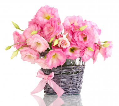 Bouquet of eustoma flowers in wicker vase, isolated on white stock vector