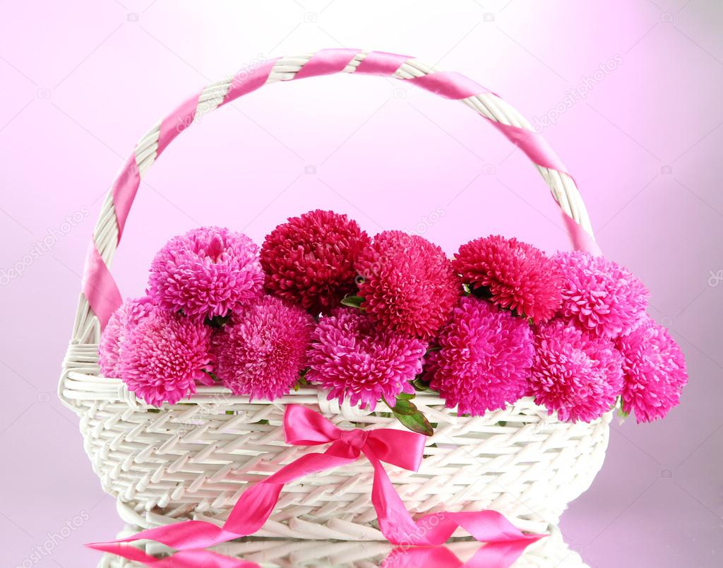 beautiful aster flowers in basket, on pink background — Stock Photo ...