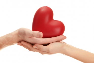 Red heart in woman and man hands, isolated on white stock vector