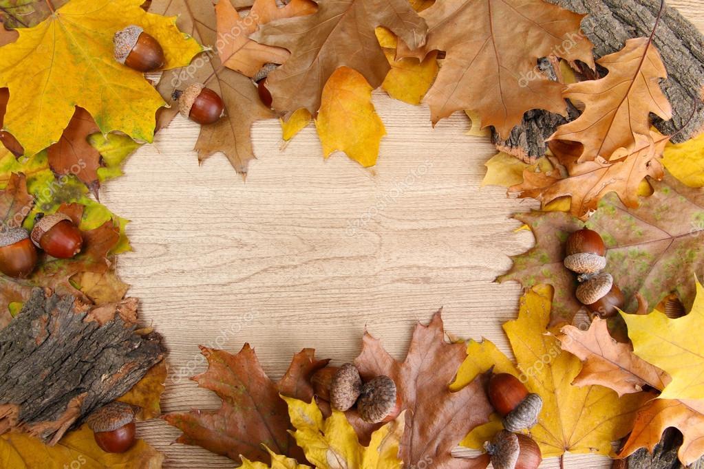 Bellotas marrones en las hojas de oto o sobre fondo de - Descargar autumn leaves ...