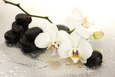 Fotografie Spa stones and orchid flowers, isolated on white