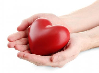 Red heart in man hands, isolated on white stock vector