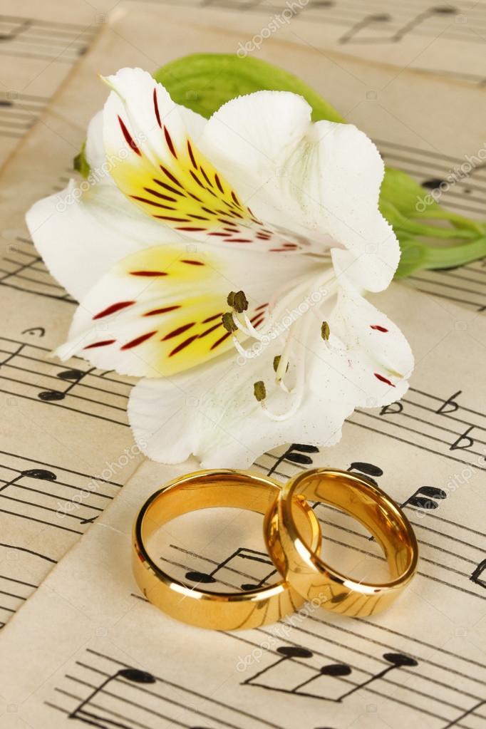 df811958f7a9 Imágenes  flores y anillos