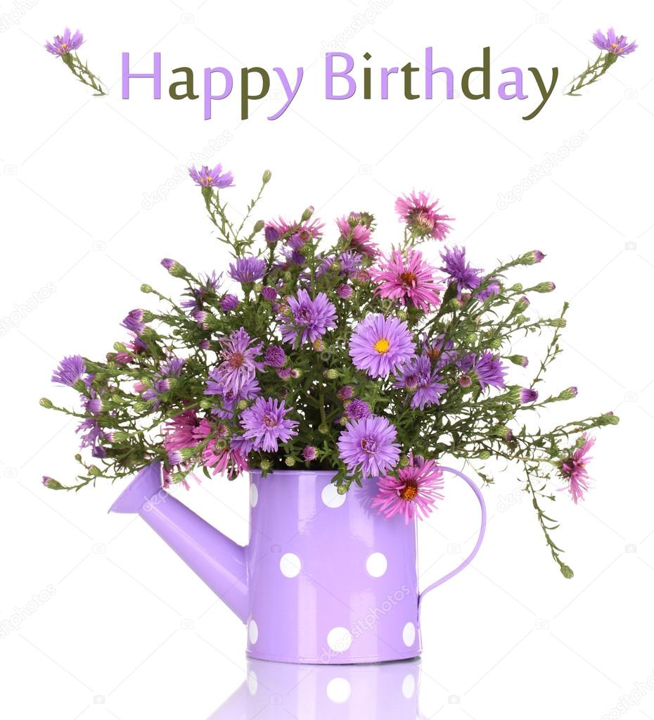Beautiful bouquet of purple flowers in watering can isolated on beautiful bouquet of purple flowers in watering can isolated on white photo by belchonock izmirmasajfo