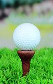 golfový míček na trávě venkovní zblízka