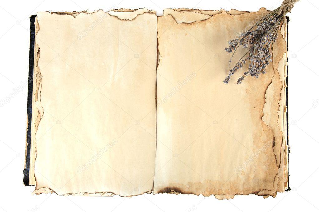 Livre Ancien Ouvert Et Lavande Photographie Belchonock