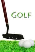 Golf club na golfovém hřišti izolované na bílém