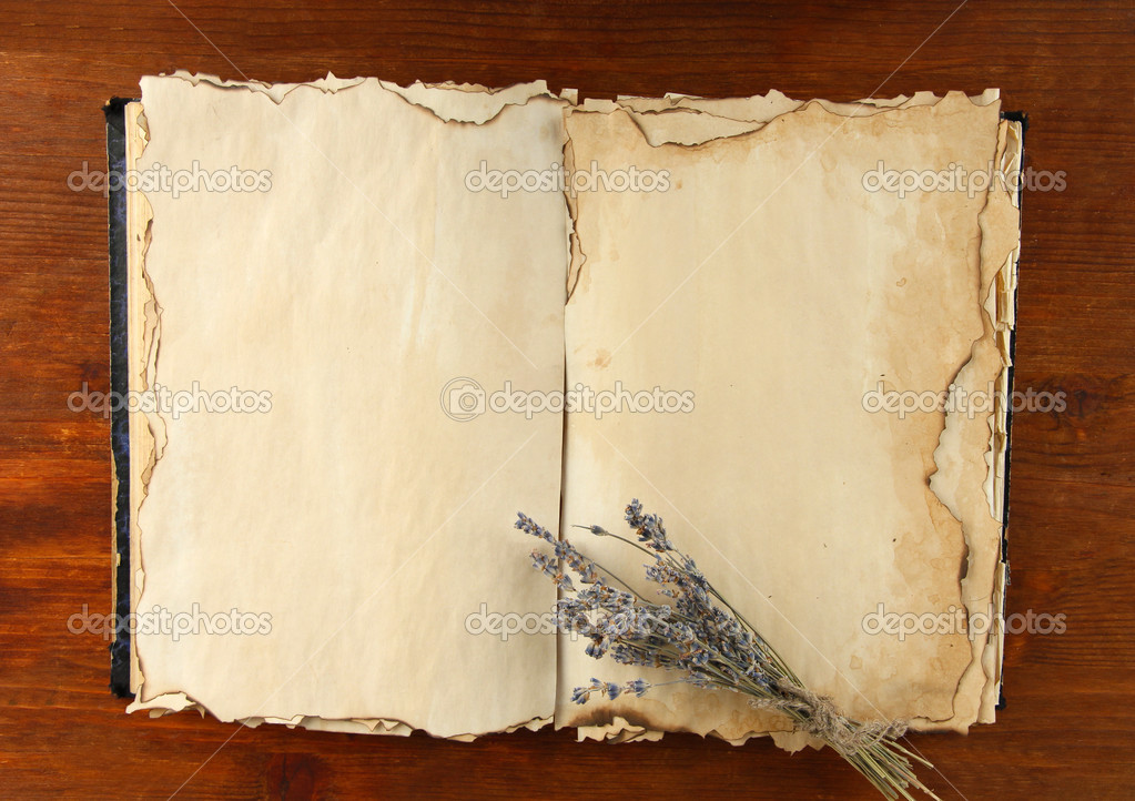 Open Old Book And Lavander On Wooden Background Stock Photo