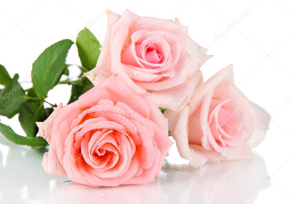 Скачать букет роз красивых