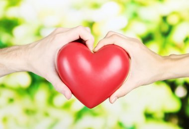 Heart in hands on nature background stock vector