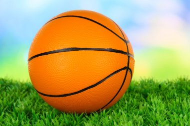 Basket ball, on green grass, on bright background