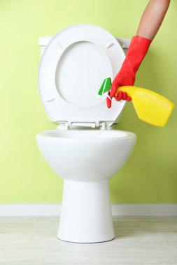 Woman hand with spray bottle cleaning a toilet bowl in a bathroom