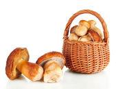 čerstvé houby v košíku izolovaných na bílém