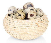 Photo Quail eggs in wicker basket isolated on white
