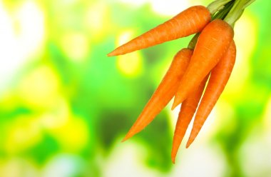 Heap of carrots on bright background