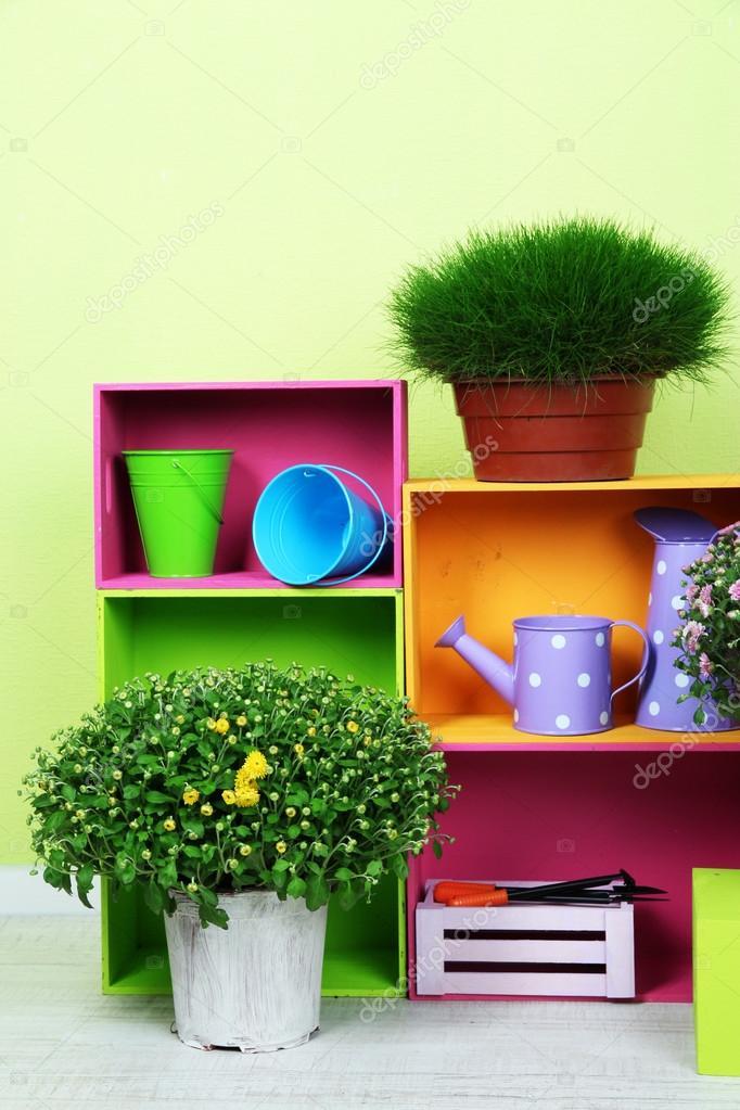 Flores en macetas con cajas de color y los instrumentos en - Macetas en la pared ...