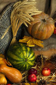 Pumpkins and apples with watermelon on straw on sackcloth background