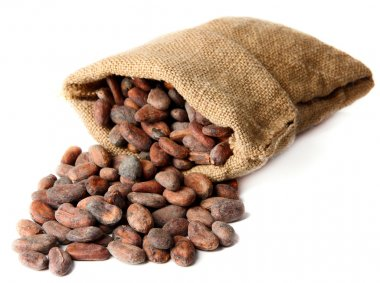 Cocoa beans in bag isolated on white