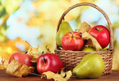 krásná zralá jablka a hrušky s žlutými listy v koši na stole na světlé pozadí