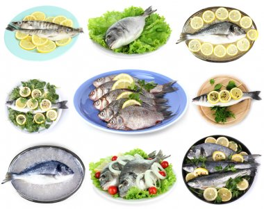 Fresh fish and fish dishes isolated white