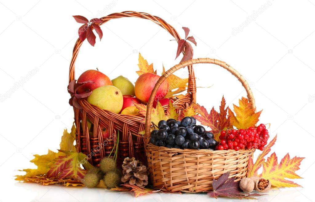 Beautiful autumn harvest in baskets and leaves isolated on white